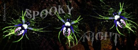 spidertimeline1