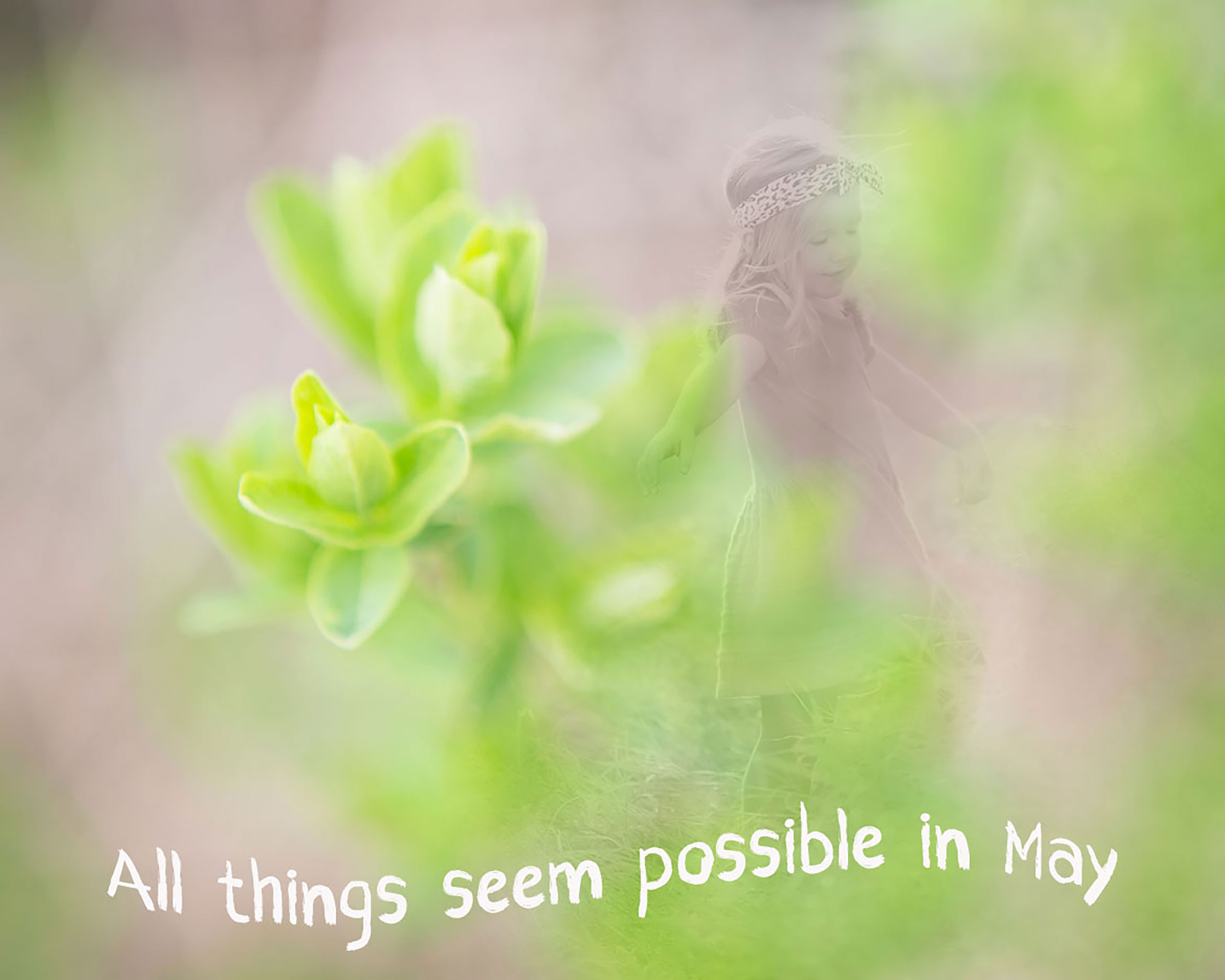 All Things Seem Possible In May 9 2016 Randy Joyce Meyer Leave A Comment Art 0488plcrblendweb2