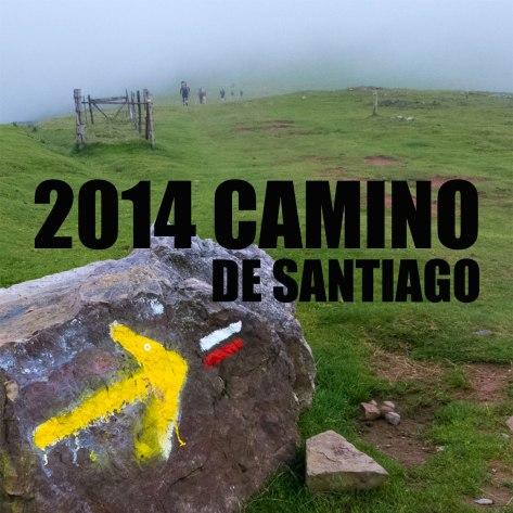 2014caminoFrancetx
